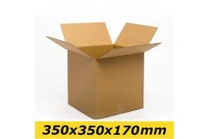 Kartona kaste 350x350x170 mm (M 1/2)